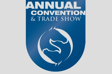 62nd  AAEP Annual Convention