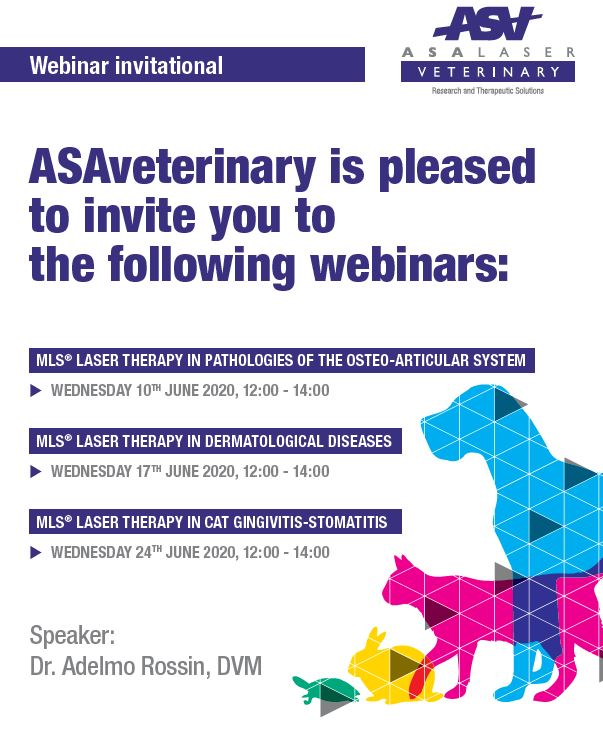 webinar_mls_laser_therapy_veterinary_202006.JPG