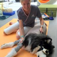 "Dr. Jane McNae - ""Paws in Motion"", Hong Kong"