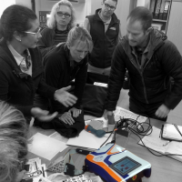 MLS® Laser Therapy training for equine sector