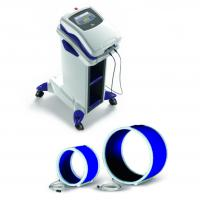 Veterinary Magnetotherapy PMT Qs